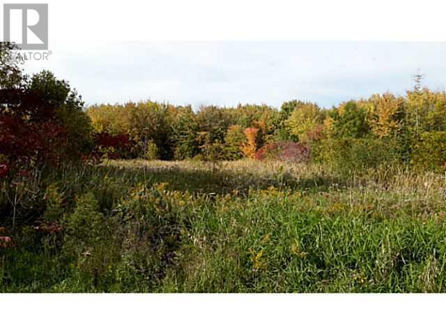 <h3>$165,000</h3><p>232 Bayshore Drive, Brechin, Ontario</p>